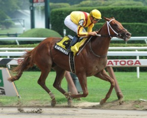 Kentucky Derby 2011 picture